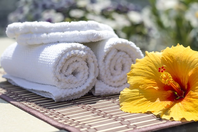 ručníky a ibišek.jpg